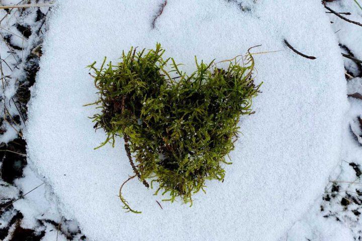 Herz im Schnee - Yoga in Olpe - tanzundfreiraum.de
